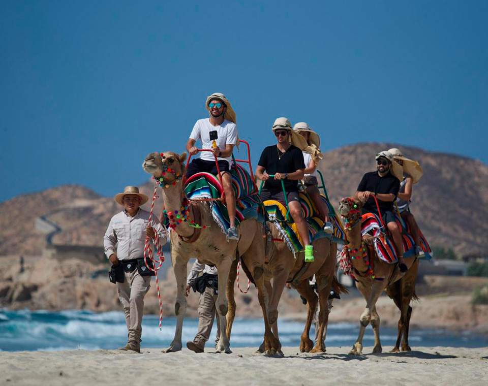 McLachlan, Smith, Hans Hach and Novikov had a camel ride